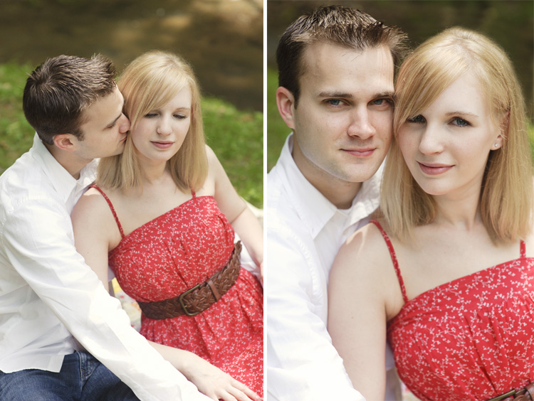 red dress picnic engagement session in charleston wv