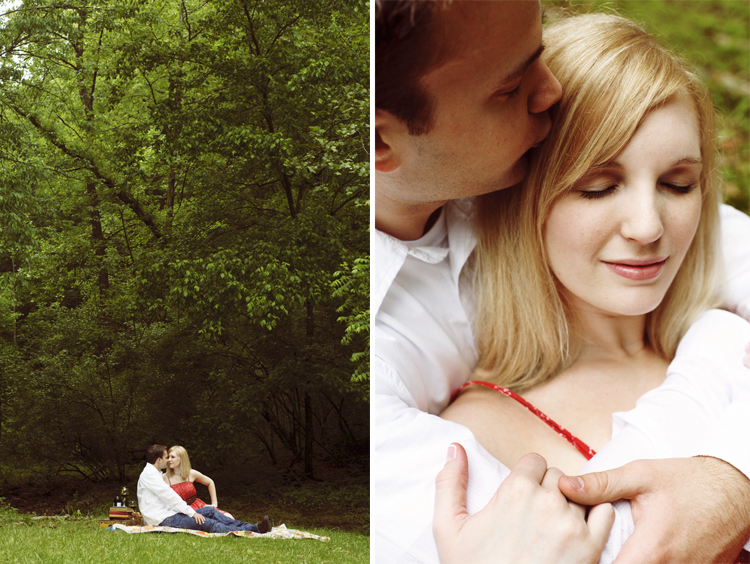 picnic engagement session charleston west virginia