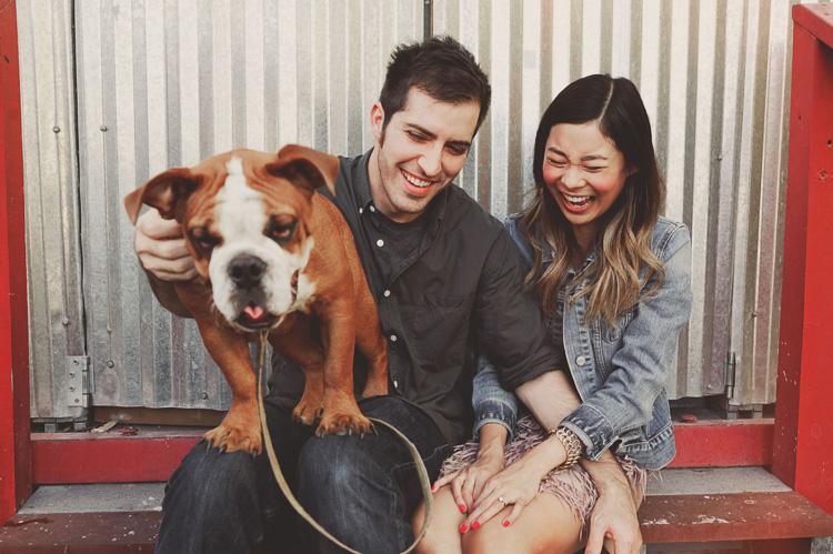english bulldog engagement pics