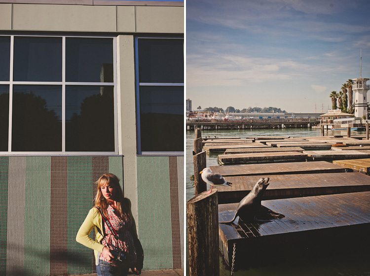 pier 41 and the seals