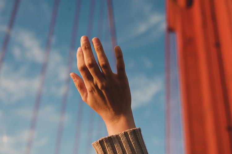 golden gate bridge and freedom