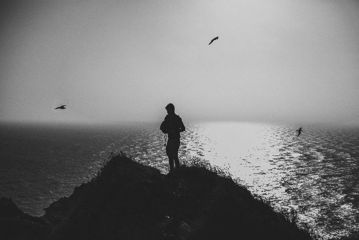 seagulls on cliff 15