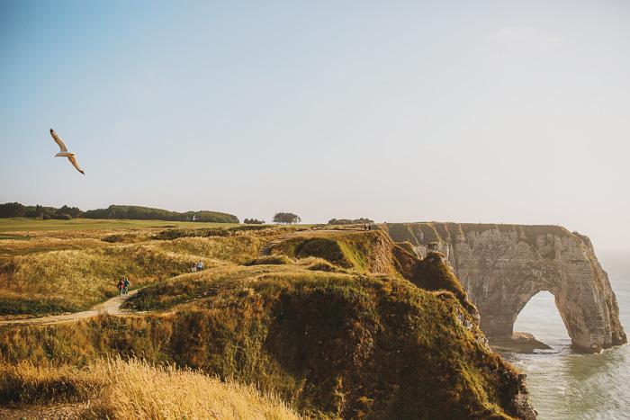 french white cliffs 27