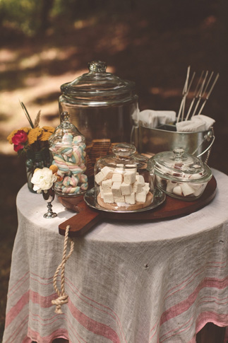 nessa k 33 homemade smores station wedding Farm Wedding in Frederick MD: Katy and Parkers Backyard