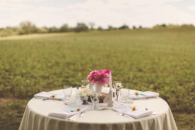 nessa k 39 wedding reception on a farm maryland Farm Wedding in Frederick MD: Katy and Parkers Backyard