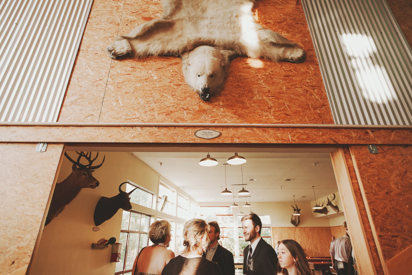 taxidermy wedding details