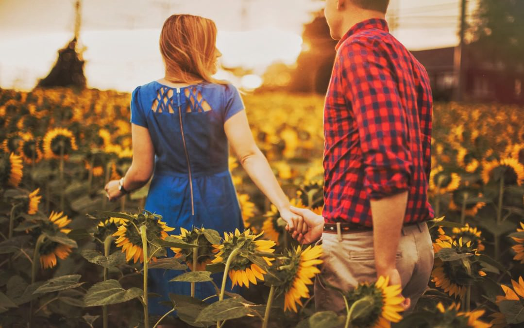 sunflower field engagement pictures maryland