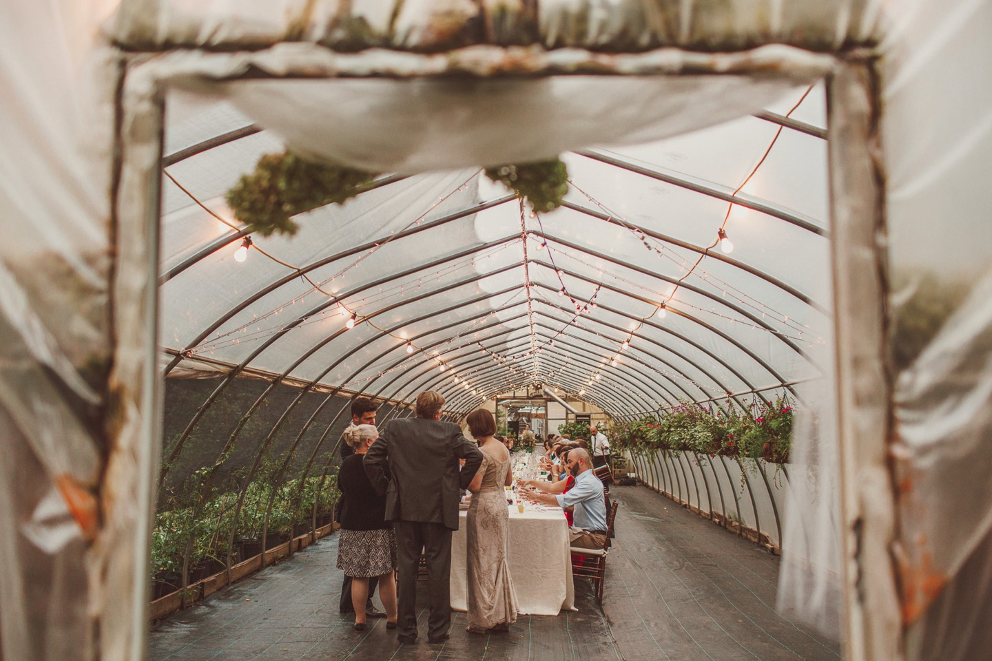 greenhouse wedding washington dc