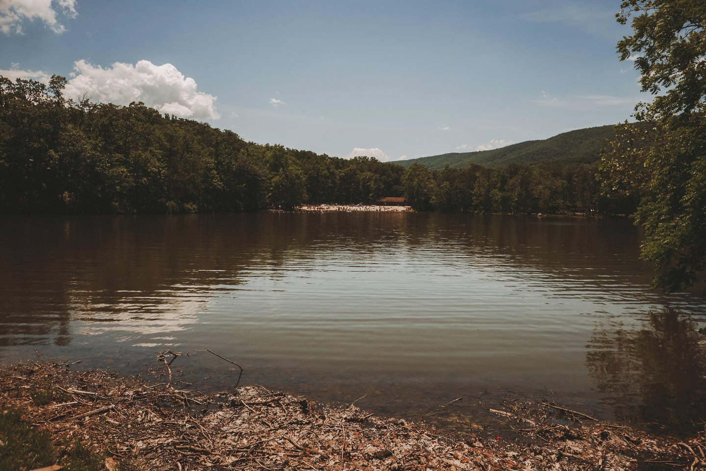 Cacapon Resort State Park wedding photos