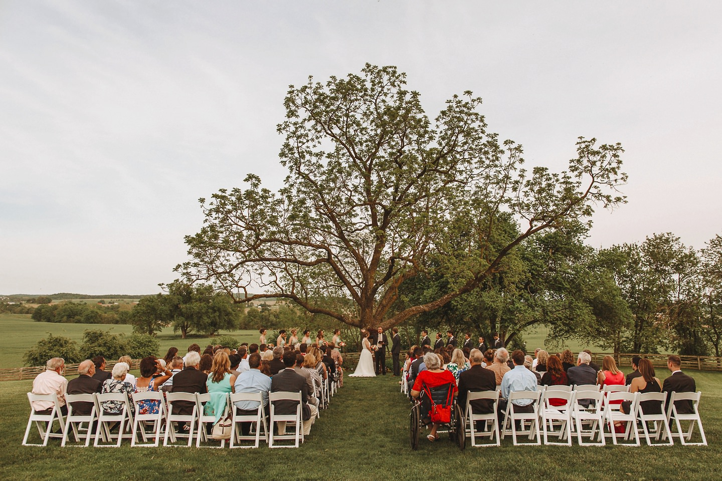walkers overlook wedding ceremony