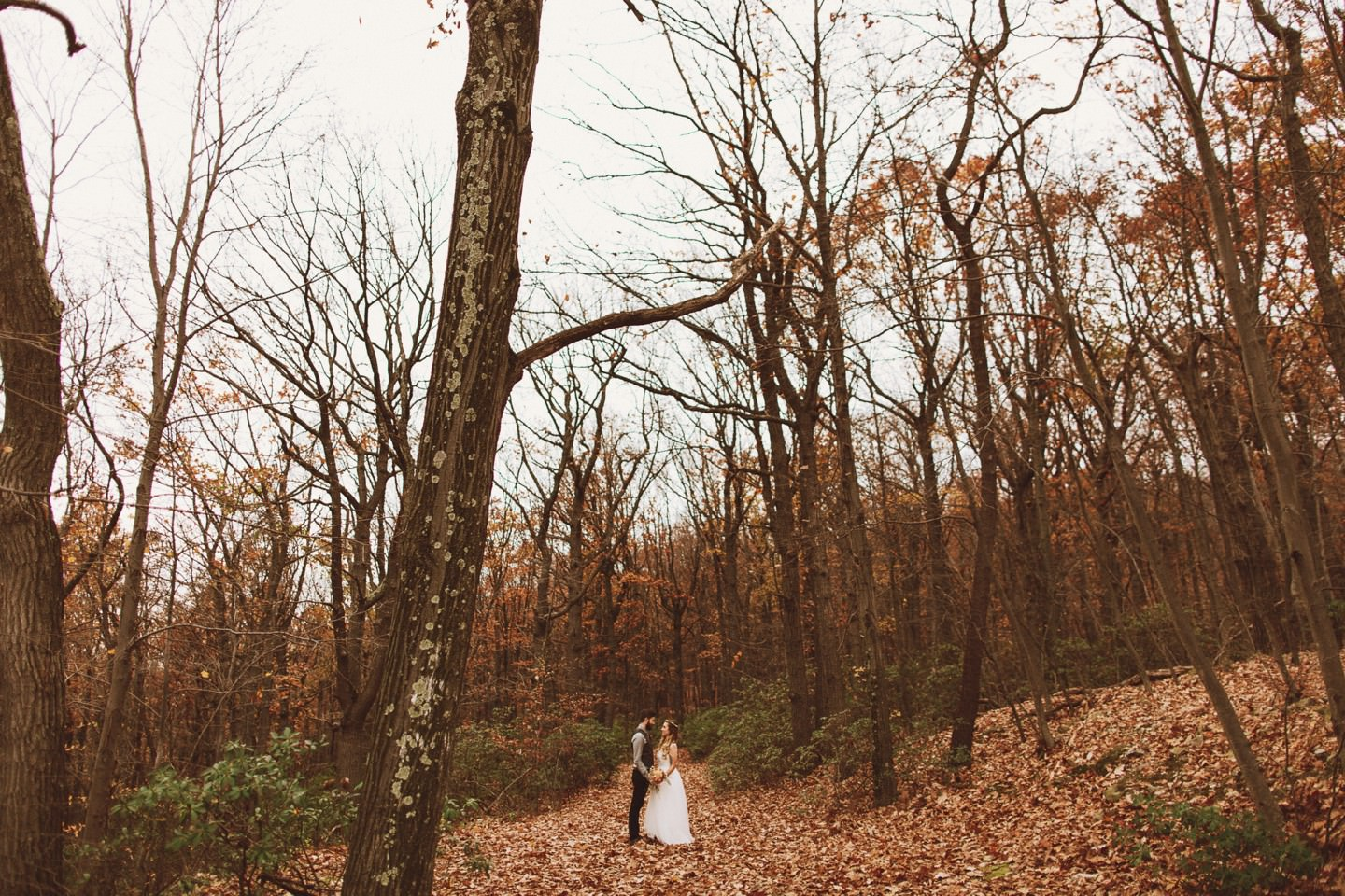 bride and groom in autumn forest