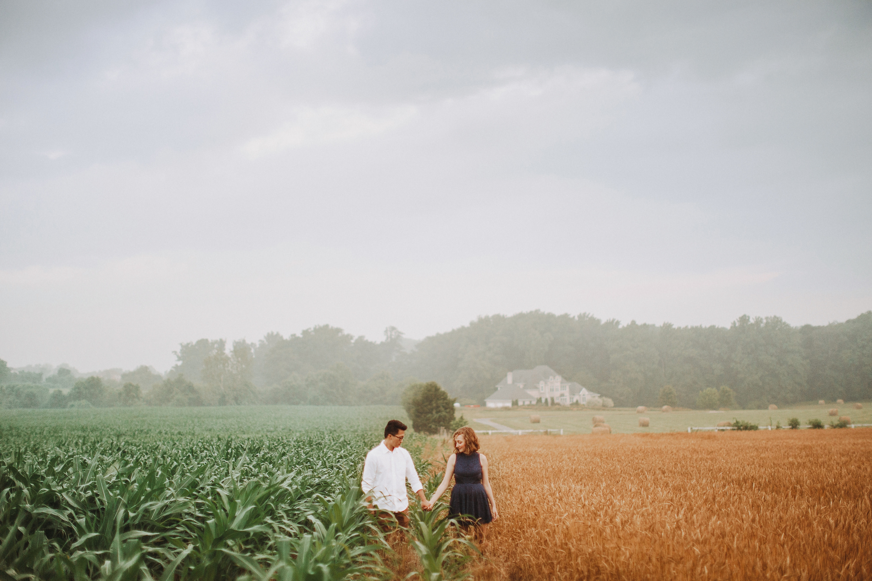 corn field engagement pictures maryland