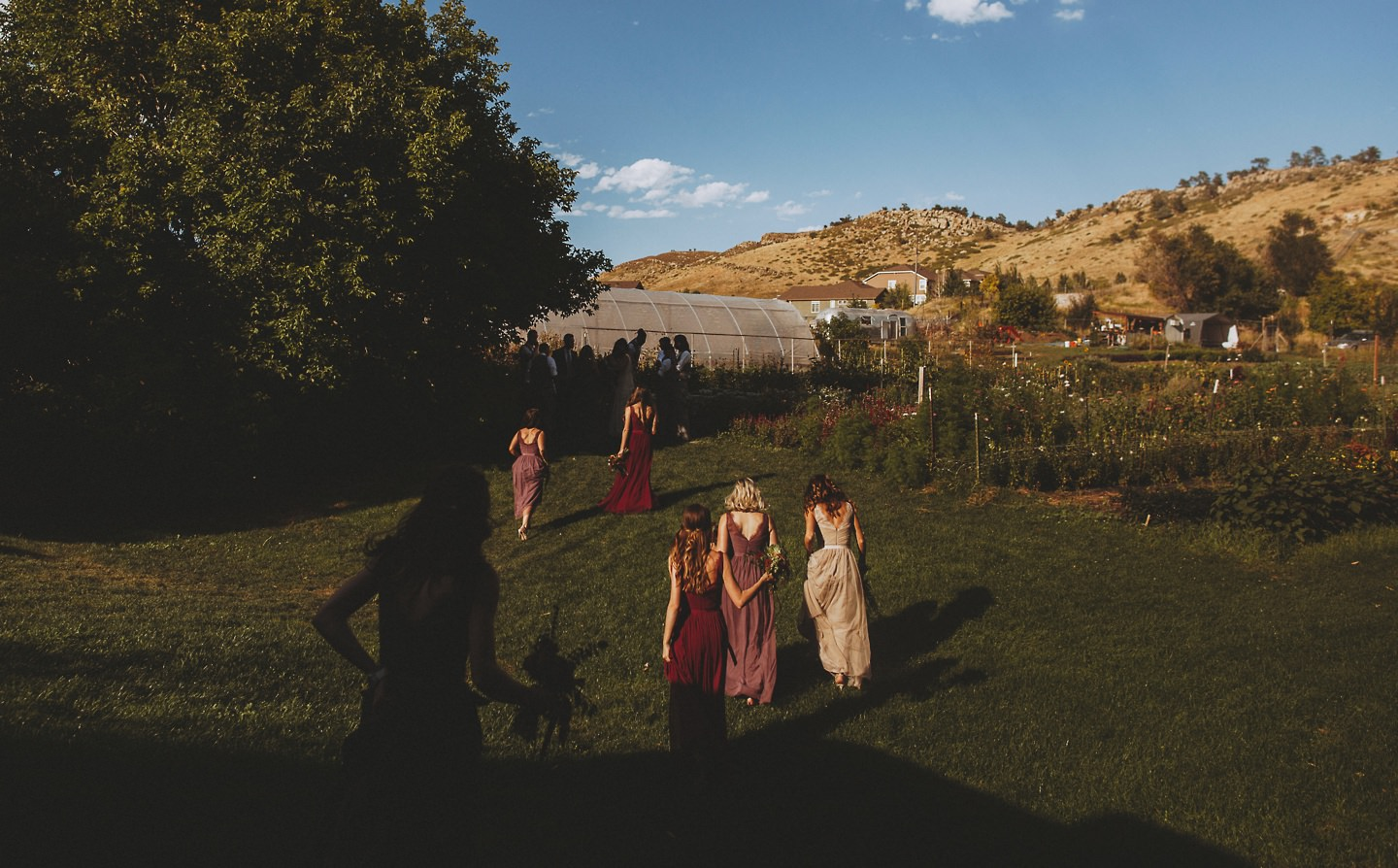 Lyons Farmette sunset bridal party